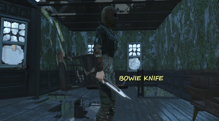Bowie Knives 3
