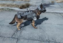 Dogmeat BOS Armor