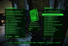 FO4 Better Inventory (German)