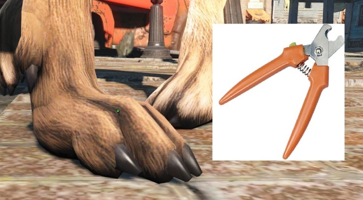 Immersive Nail Trim for Dogmeat