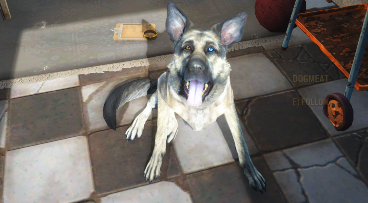 Old Dogmeat Fallout 4
