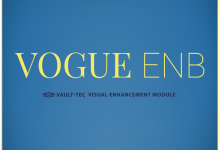 VOGUE ENB - Realism Mod