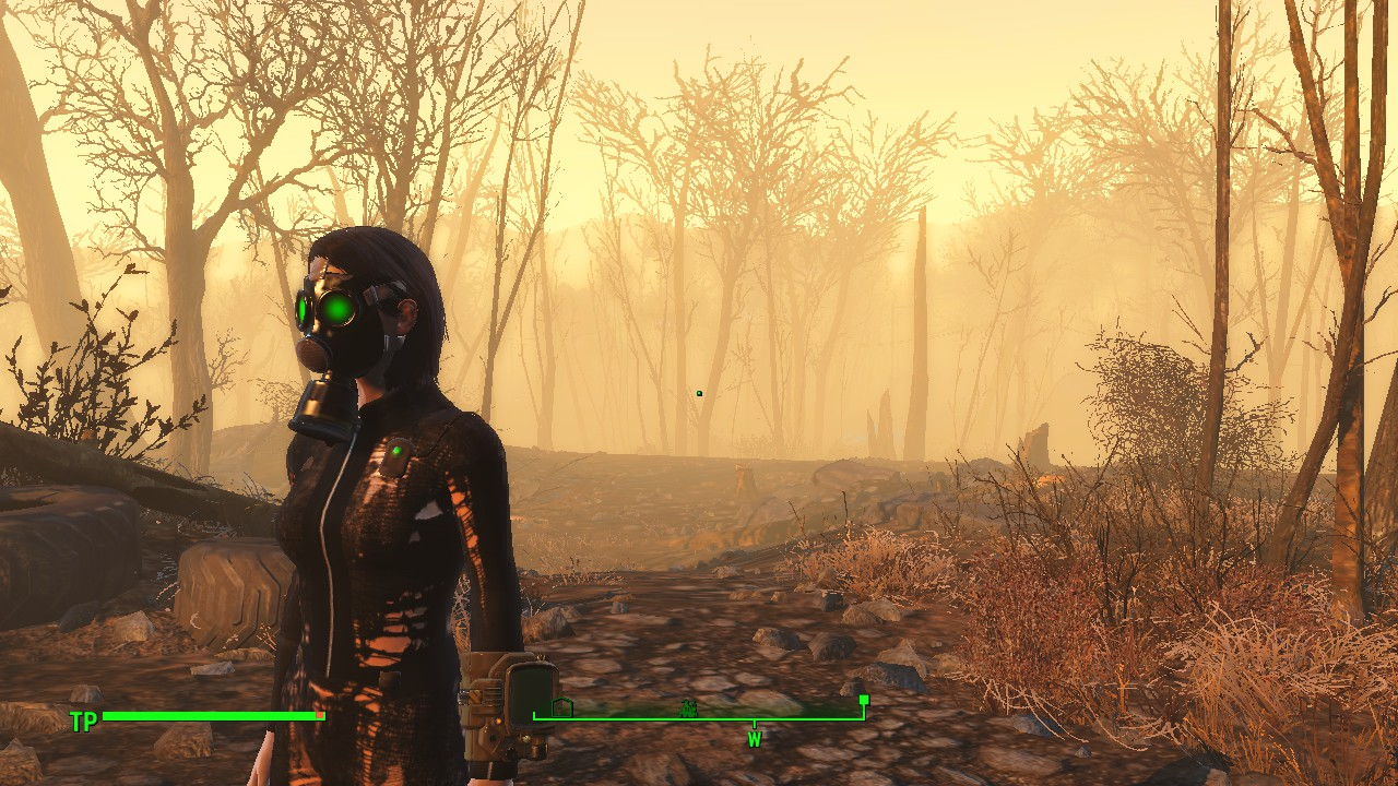 S A N S Sexy Ass Nylon Suite Fallout 4 Fo4 Mods